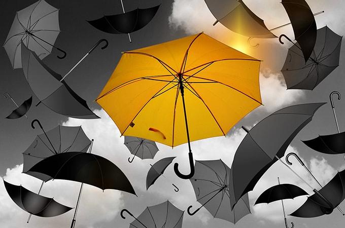 個人事業主が加入できる  年金や保険の種類と税金について