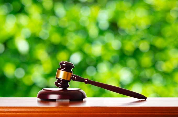 確定申告! 必要経費が認められなかった  裁判事例を解説します!