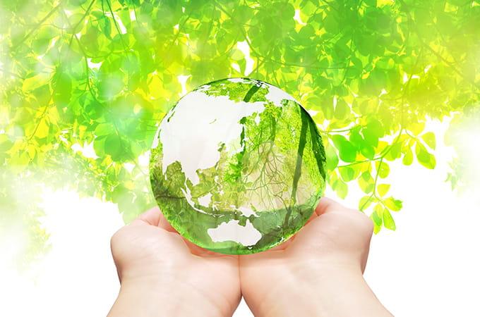 【環境と税金】県内の法人・個人にかかる  長野県森林づくり県民税とは