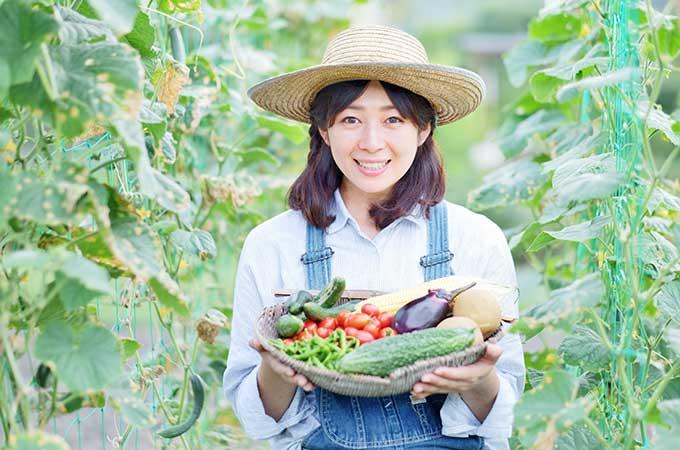 農家さん必見! 農業所得の確定申告で  注意すべき点などを解説