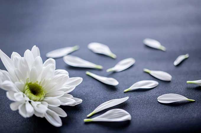 【終活のすすめ】よりよい「お別れ」のために  知っておきたい葬儀の基本と最新トレンド