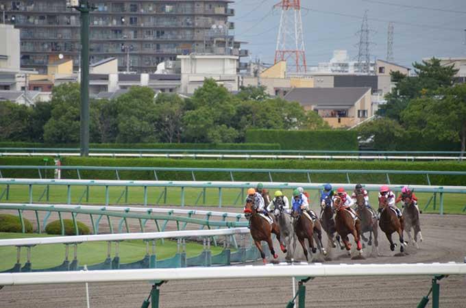 【個人・法人】競馬の払戻金にかかる  税金について徹底解説